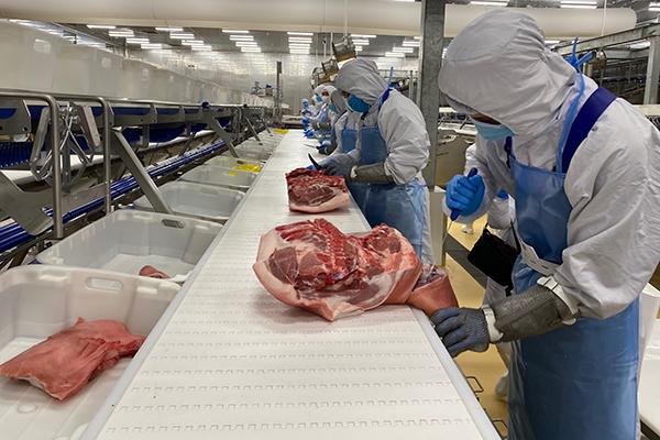 Kiểm soát chặt chẽ từ khâu chăn nuôi đến giết mổ